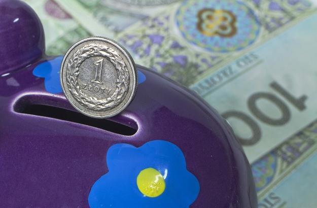 Oprocentowanie depozytów zaczęło rosnąć dopiero w drugiej połowie 2011 roku /fot. Leszek Kotarba /Agencja SE/East News