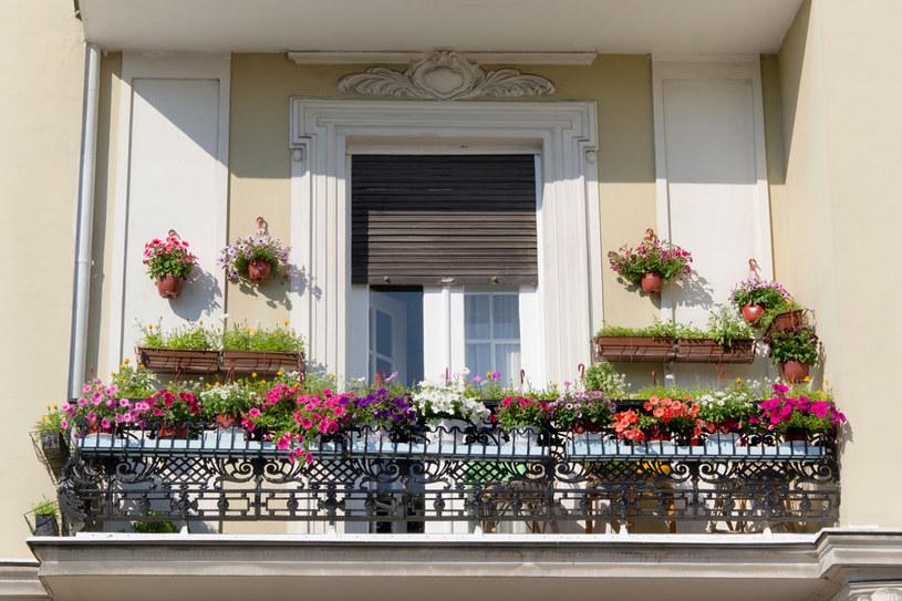 Oprócz funkcji ozdobnej, twój balkon może pełnić rolę warzywniaka /123RF/PICSEL