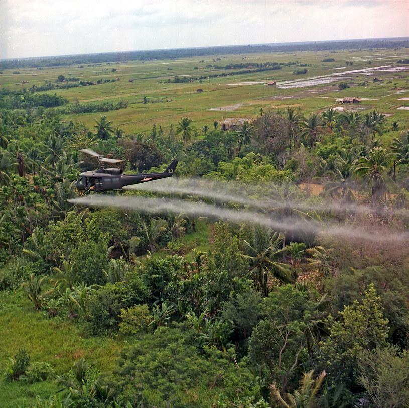 Opryski defoliantami w delcie Mekongu podczas wojny w Wietnamie /Wikipedia