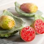 Opuncja figowa: Bogactwo właściwości ukrytych w małym owocu