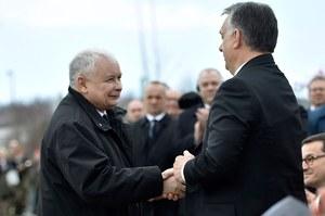 Orban wygrywa, PiS patrzy