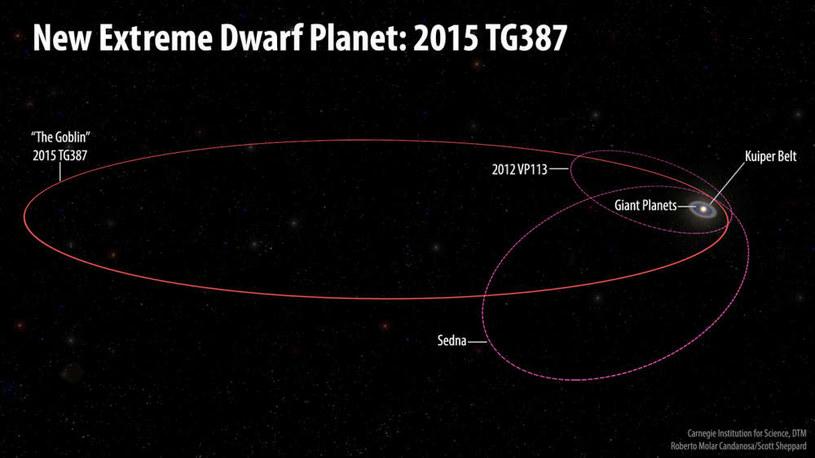 Orbita  2015 TG387 jest wyjątkowo ekscentryczna /materiały prasowe