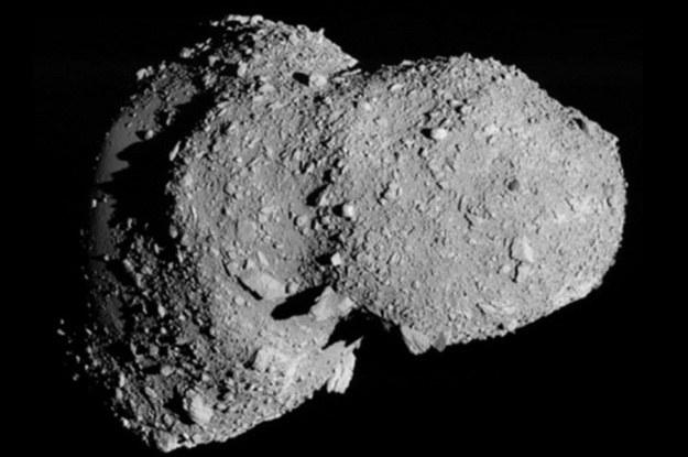 Orbital Development właścicielem asteroidy Eros? Wątpliwe... /materiały prasowe