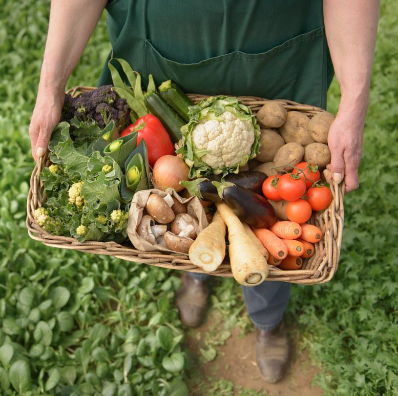 organiczna żywność /© Photogenica