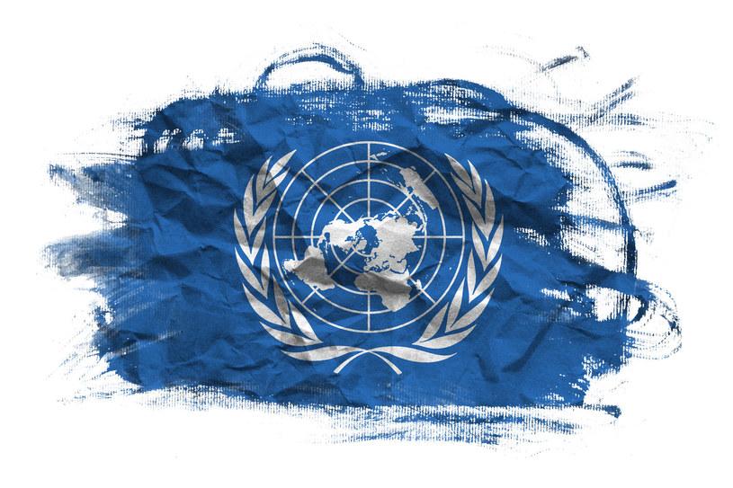 Organizacja Narodów Zjednoczonych /123RF/PICSEL