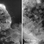 Organizmy żywe wyhodowane na fragmentach marsjańskiego meteorytu
