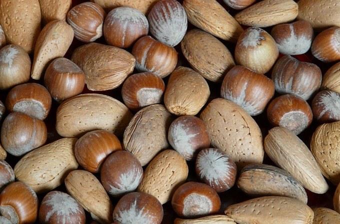 Orzechy i nasiona /© Photogenica