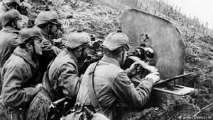 Orzeł i pikielhauba. Polscy żołnierze kajzera