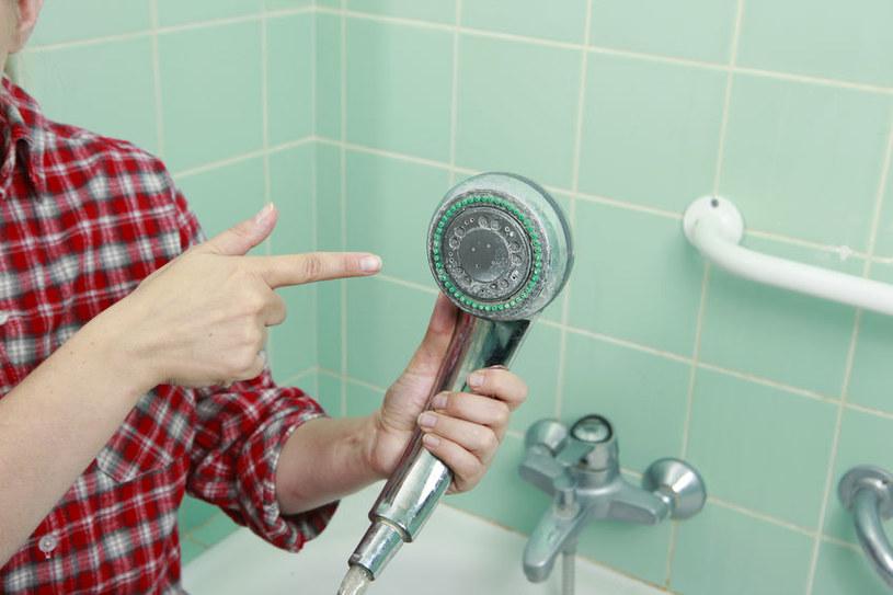 Osad na słuchawce prysznicowej /©123RF/PICSEL