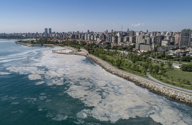 Osad widoczny na Morzu Marmara /ERDEM SAHIN /PAP/EPA