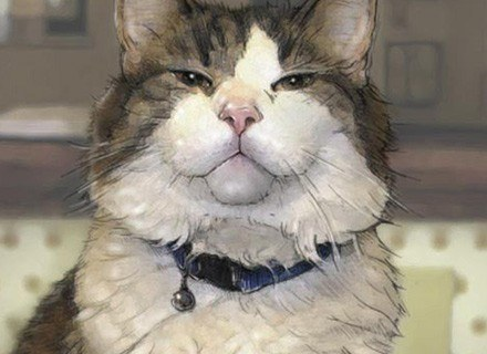 Oscar. Kot, który przewiduje śmierć. Fot. The New English Journal of Medicine /AFP
