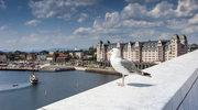 Osiem rzeczy, które musisz zrobić w Oslo, ale… inaczej!