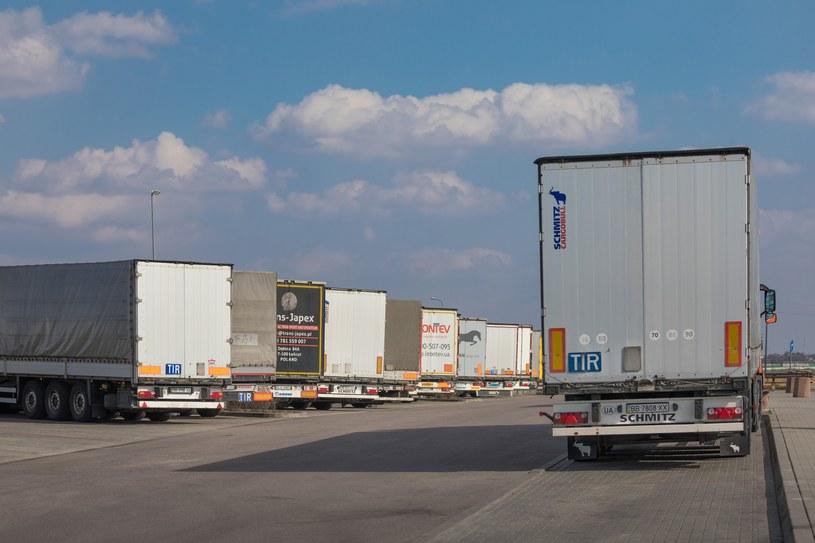 Osoby głuche będą mogły prowadzić ciężarówki / Arkadiusz Ziolek /East News