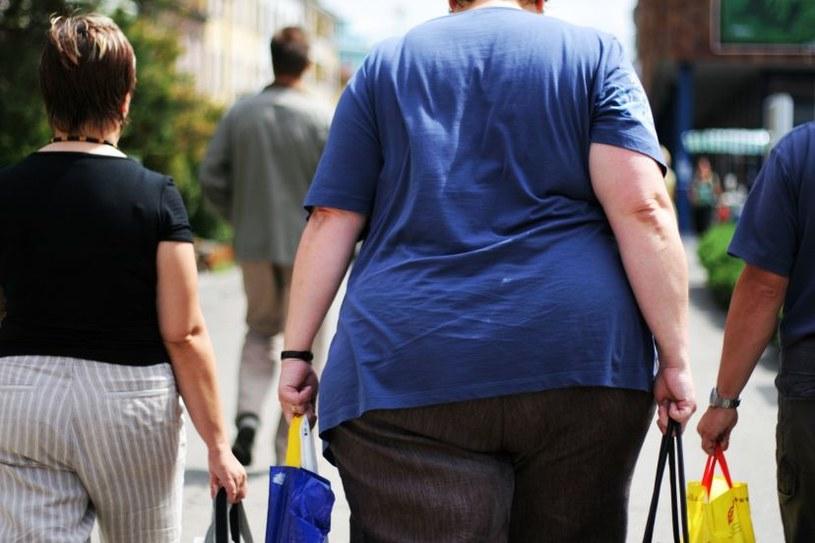 Osoby otyłe też są dobrymi dawcami komórek macierzystych /123RF/PICSEL