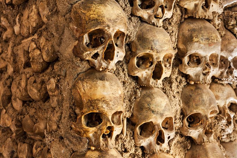 Ossuarium w Czermnej jest dziś popularnym miejscem wycieczek /123RF/PICSEL