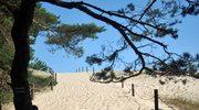Ostatnie dzikie plaże. Słowiński Park Narodowy