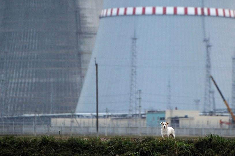 Ostrowiec już pracuje /AFP