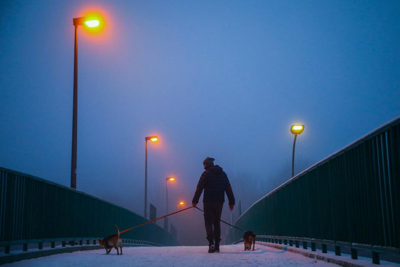 Ostrzeżenie przed gęstymi mgłami w sześciu województwach /Beata Zawrzel /Reporter
