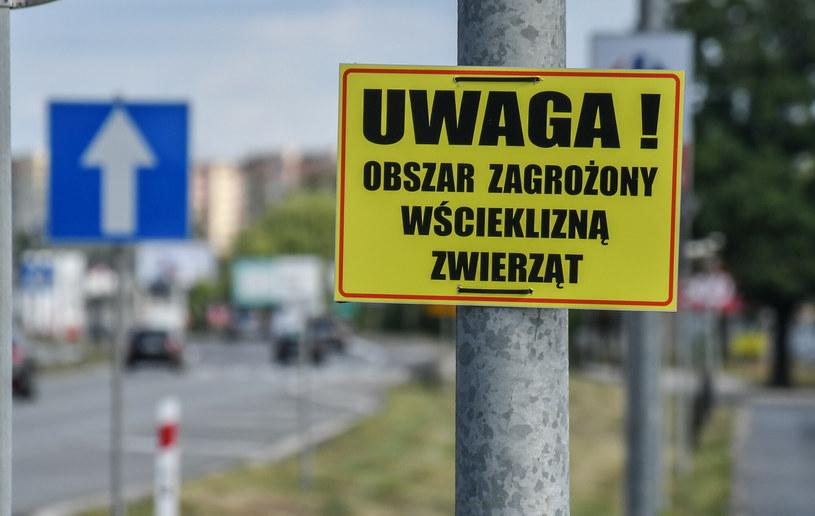 Ostrzeżenie przed wścieklizną /Polska Press/East News /East News