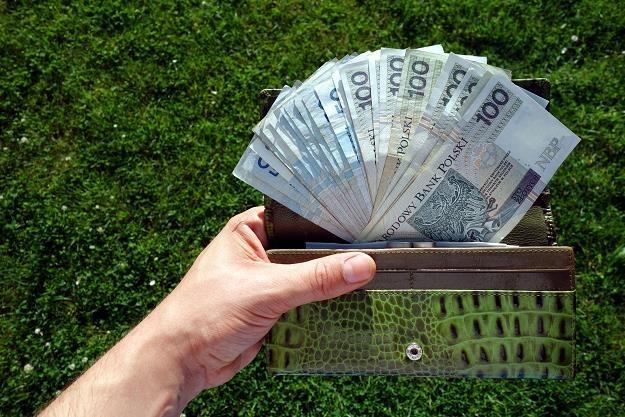 Oszczędności Polaków wciąż są zbyt niskie /©123RF/PICSEL