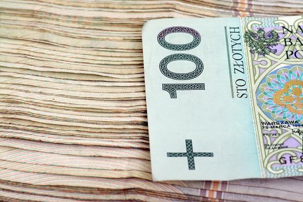 Oszczędności w SKOK-ach obejmuje gwarancjami BFG /©123RF/PICSEL