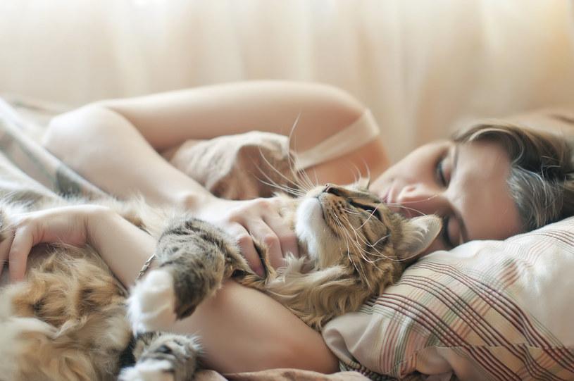 Oto powody, dla których warto przytulić się kota /123RF/PICSEL