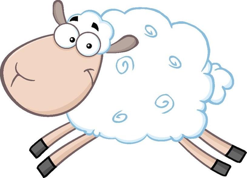 Owieczkę łatwo narysować /©123RF/PICSEL