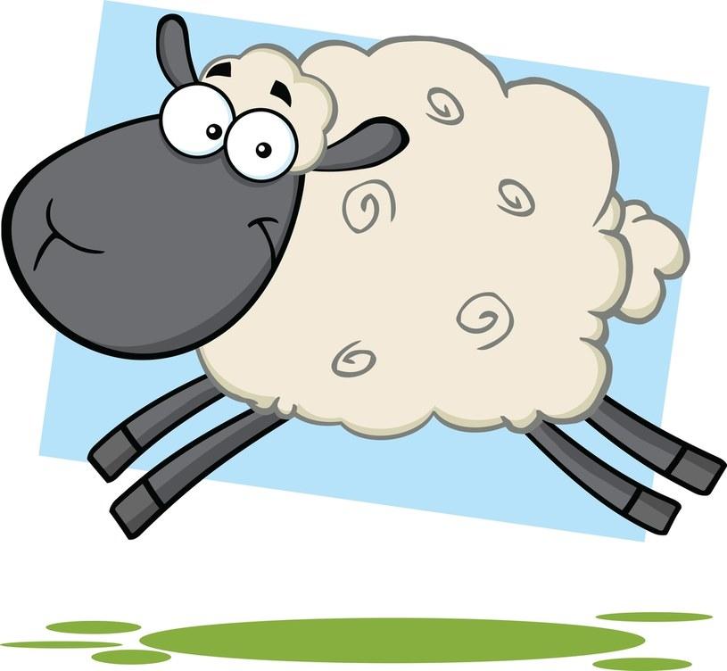 Owieczkę można pokolorować /©123RF/PICSEL