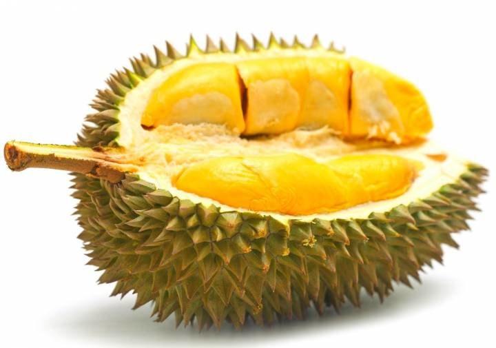 Owoc durian właściwości /© Photogenica