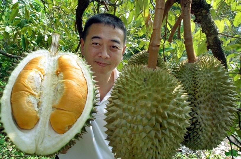 owoc durian /© Photogenica