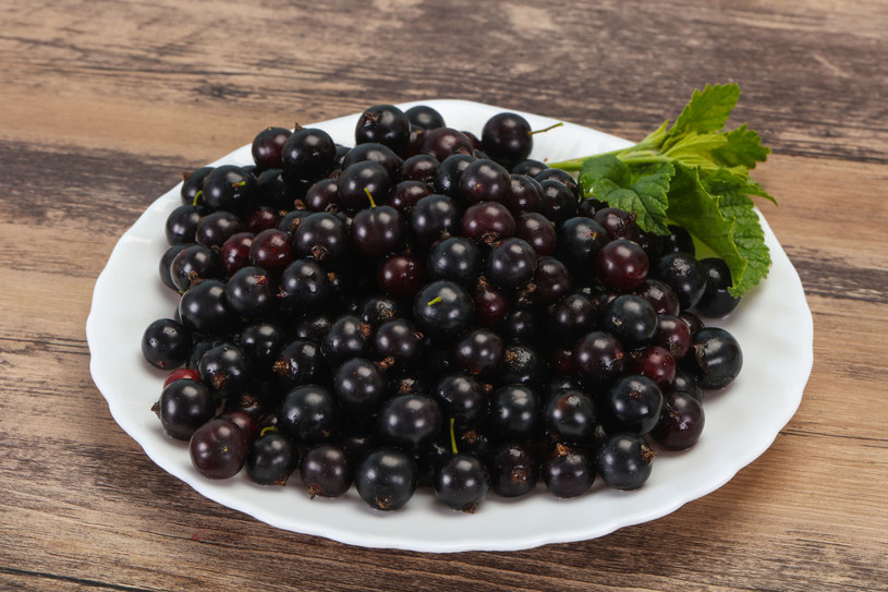 Owoce czarnej porzeczki należą do jednych z najzdrowszych na świecie /123RF/PICSEL
