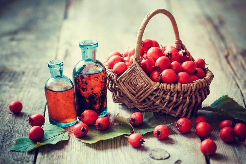 Owoce głogu pomogą odzyskać energię i przywrócić jasność umysłu. Pij szklankę naparu dwa razy dziennie. /123RF/PICSEL