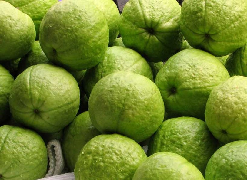 owoce gujawy /© Photogenica