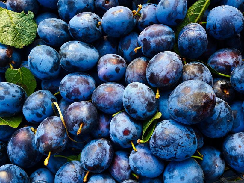 Owoce należy przetwarzać wtedy, gdy są jeszcze świeże /123RF/PICSEL