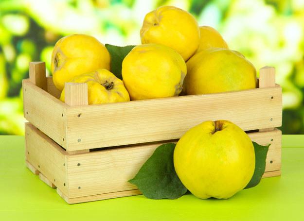 Owoce pigwy są skarbnicą witamin: C i B, a także mikroelementów: fosforu, potasu, wapnia /123RF/PICSEL