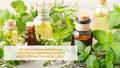 Pachnące olejki i zioła. Mają wiele zastosowań