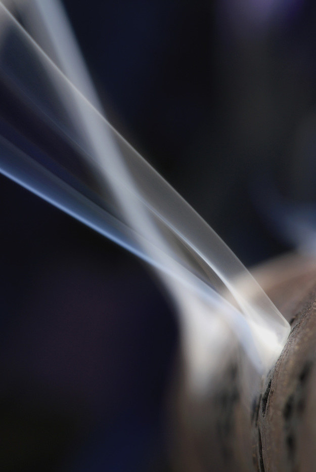 palenie liści /© Photogenica
