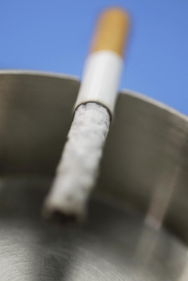 Palenie tytoniu /© Photogenica