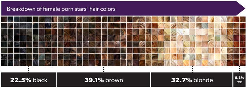 Paleta obrazująca kolor włosów aktorek z branży pornograficznej /materiały prasowe