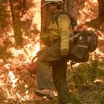 Palić, żeby zapobiegać pożarom