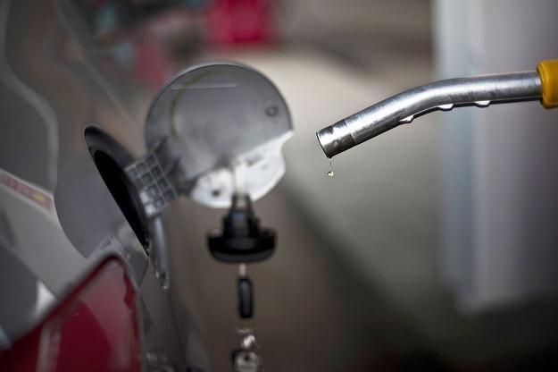 Paliwa powinny potanieć /AFP