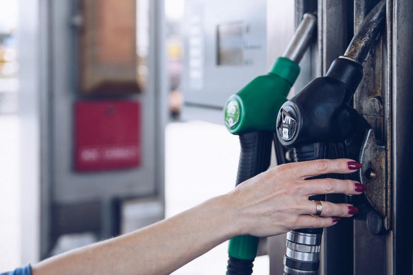 Paliwa wciąż drożeją /123RF/PICSEL