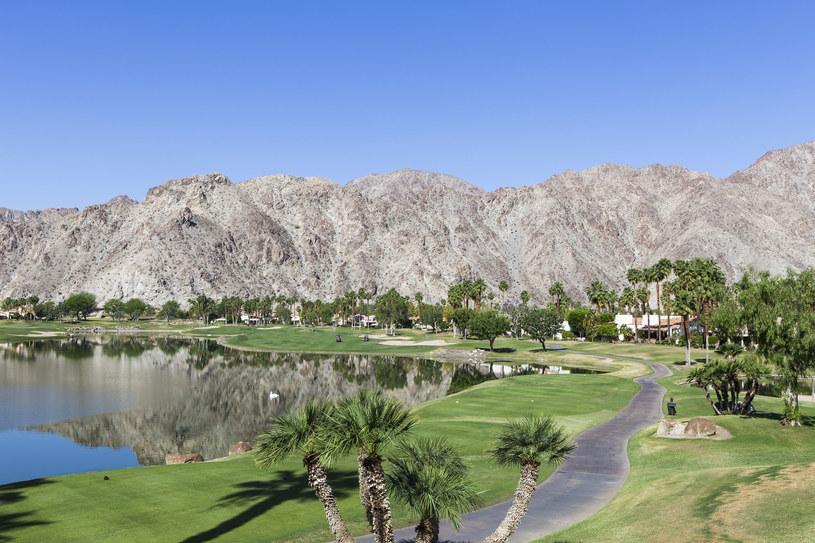 Palm Springs pola golfowe /123RF/PICSEL