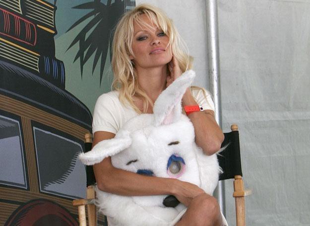 Pamela Anderson kieruje organizacją PETA, broniącą praw zwierząt /Getty Images/Flash Press Media