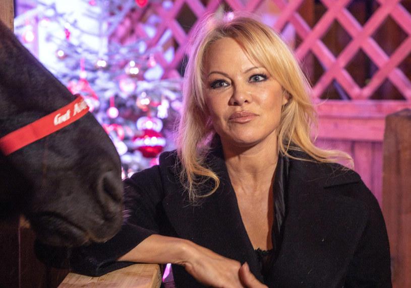 Pamela Anderson zdobyła popularność dzięki roli pięknej ratowniczki /SIPA /East News