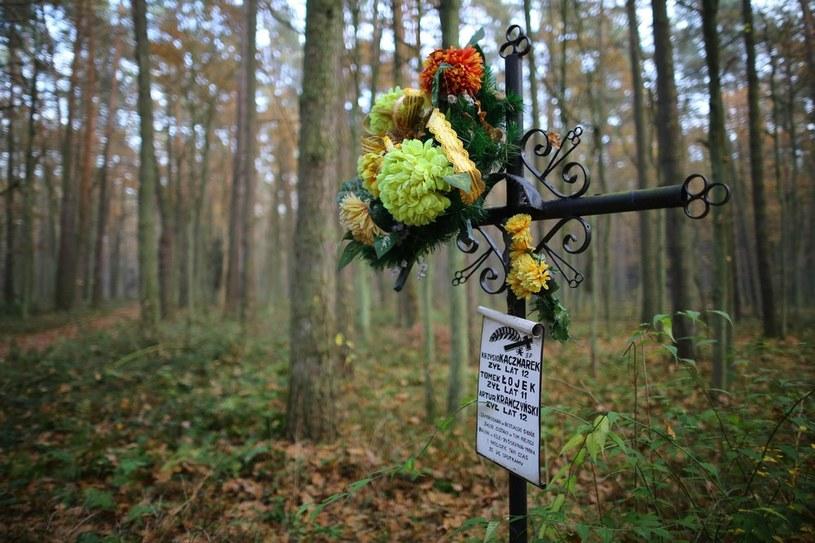 Pamiątkowy grób /Adam Staśkiewicz /East News