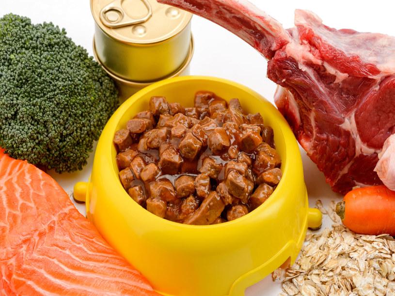 Pamiętajmy o wyborze właściwej karmy i odpowiednich porcjach /123RF/PICSEL