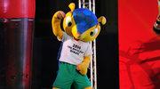 Pancernik kulowaty - maskotka mundialu w Brazylii