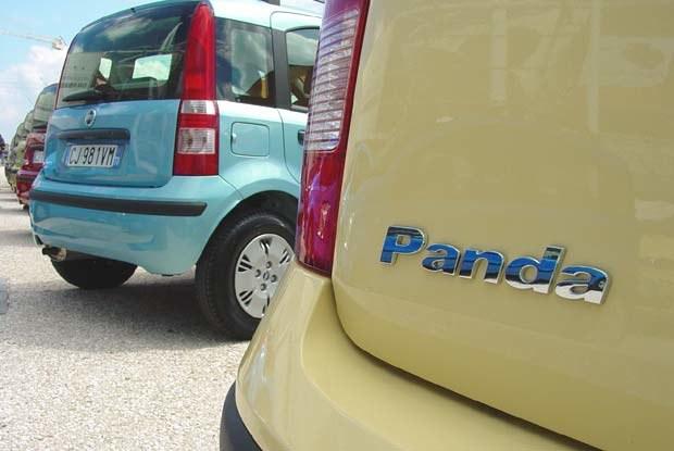 Panda (kliknij) /INTERIA.PL