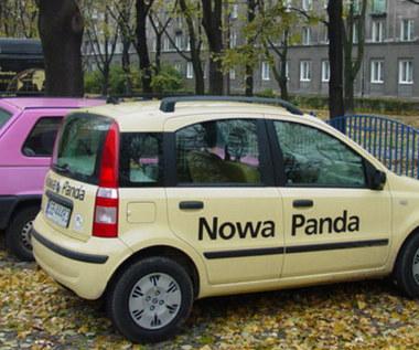 Panda kontra panda